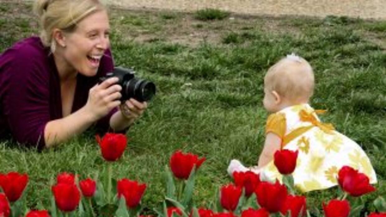 La Encuesta Nacional de Crecimiento Familiar encontró queuna mayor prop...