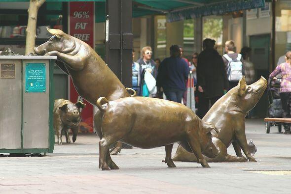 Los cerdos de Rundle Mall, Adelaide (Australia)