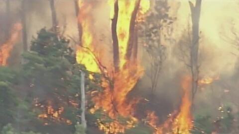 Alerta por incendio que consumió más de 600 acres de maleza en Pembroke...