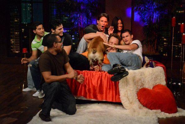 Los perros del público se lanzaron sobre Maripily para mostrarle su afec...