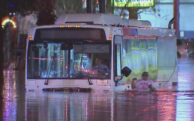 Buen samaritano hispano ayuda a varios pasajeros de un autobús de...
