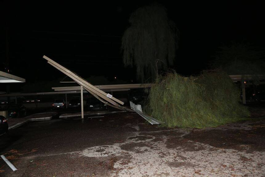 Estos son algunos de los daños que dejó a su paso una tormenta severa en...