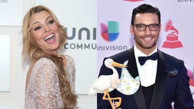 Marjorie de Sousa y Julian Gil serán papás ¡Conoce su historia de amor!