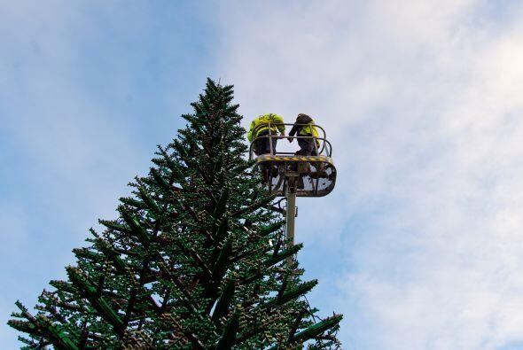¡Su árbol Navideño!