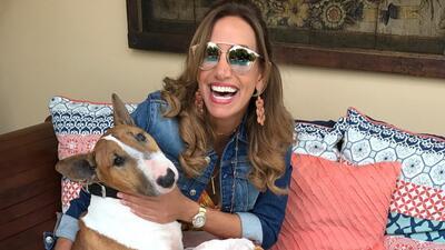 Lili Estefan pide ayuda en Instagram para encontrar a su perro