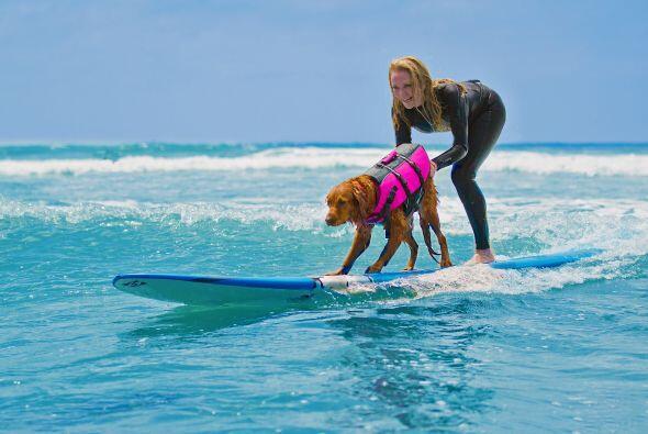 Desde ahora el mar de California tiene una estrella de surf que además a...