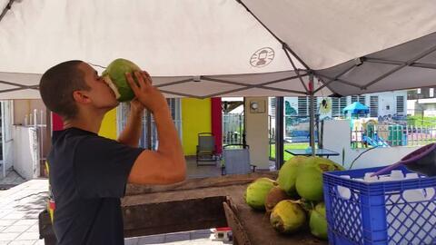 El agua de coco de Loíza, alivio económico para los jóvenes