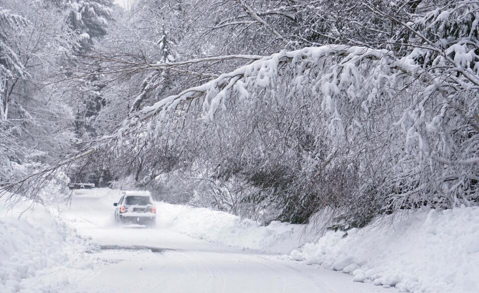 Consejos para manejar en nieve y hielo Kingsbury Lane in Kennebunk, Main...