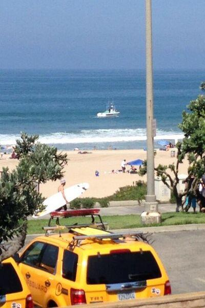 De acuerdo con las autoridades, Robles fue atacado por un tiburón blanco...