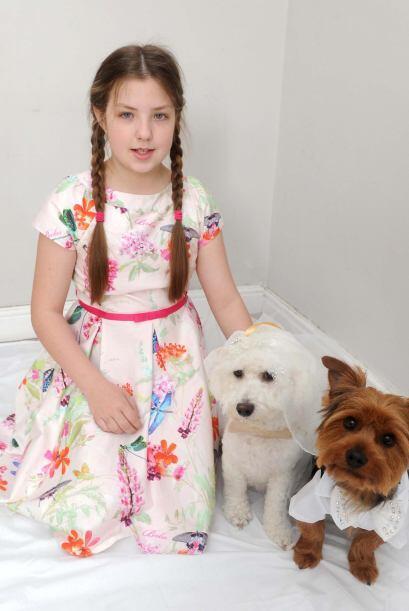 Alisha tuvo a Eddie y a Squidgy desde que eran cachorros.