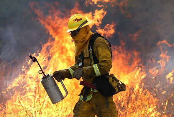 Un bombero se aleja de una llama alta mientras intentaba quemar la hierb...