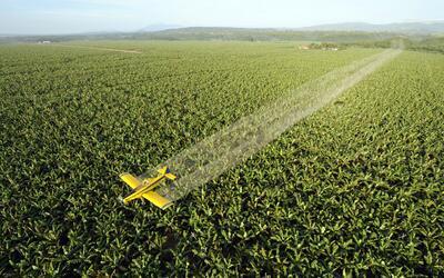 La EPA autoriza el uso del Naled por considerarlo inocuo en seres humano...