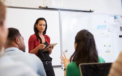 Los estudios sobre mayores números de profesores de minorías concluyen q...