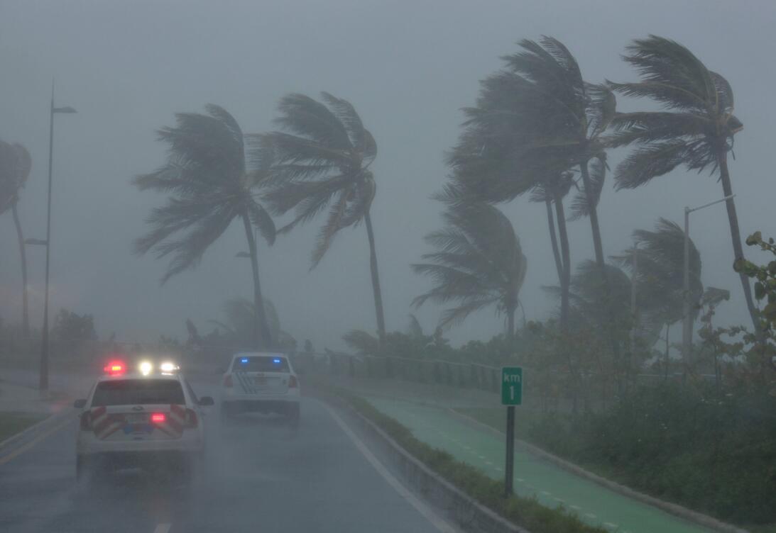 Los vientos del Huracán Irma mueve las palmeras en la costa de Puerto Rico.