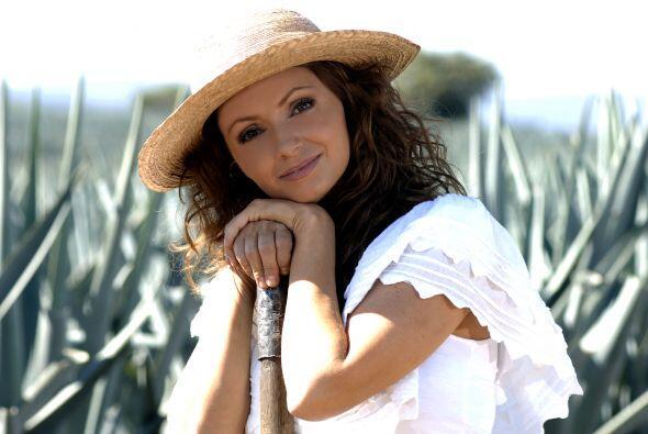 Angélica Rivera también dio la espalda a las telenovelas.