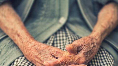 Se cree que el envejecimiento está asociado al 'estrés oxidativo&#39...