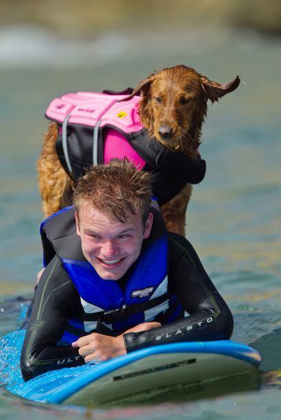 Este perro tiene un amor extraño al surf pero al mismo tiempo usa sus ha...