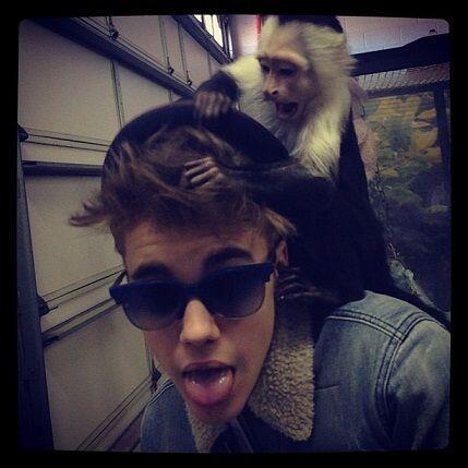 """""""¿Por qué esto es divertido para ti? LOL""""- Justin Bieber."""