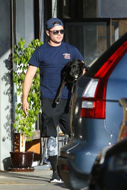 Adoptaron a su mascota en un refugio canino en Tailwaggers, Los Ángeles.