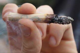 La marihuana está presente en los comicios de medio tiempo de nov...