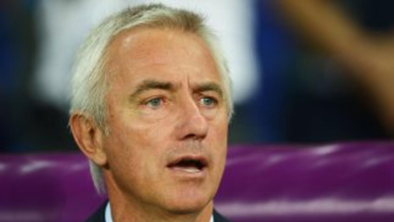 El ex técnico de la escuadra de Holanda probará suerte con el Hamburgo d...