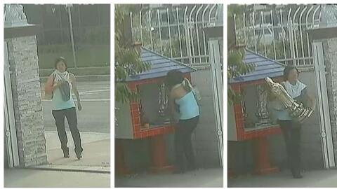 La mujer robó dos estatuas el 26 de febrero y una más el 6...