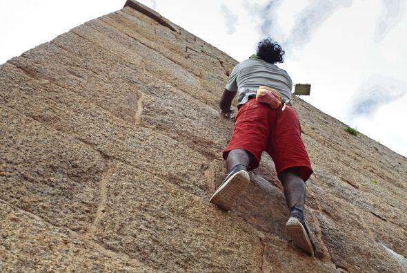 En cuestión de segundos es capaz de subir por las paredes sin complicaci...