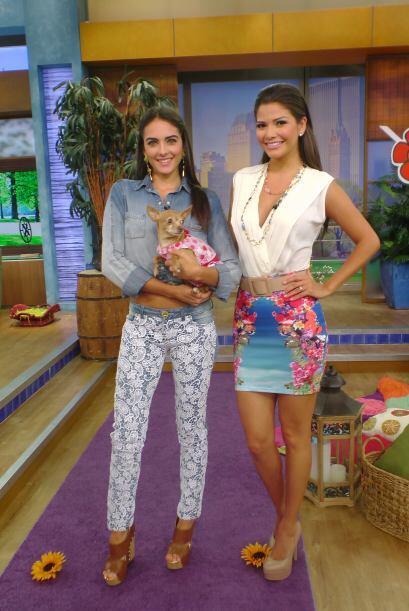 Tanto Ana como Daniela estaban felices intercambiando consejos de moda y...