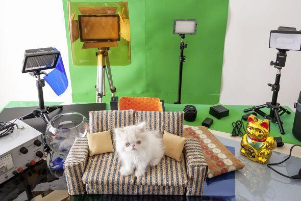 Un ex camarógrafo que utiliza una mezcla de juegos en tiempo real, difer...