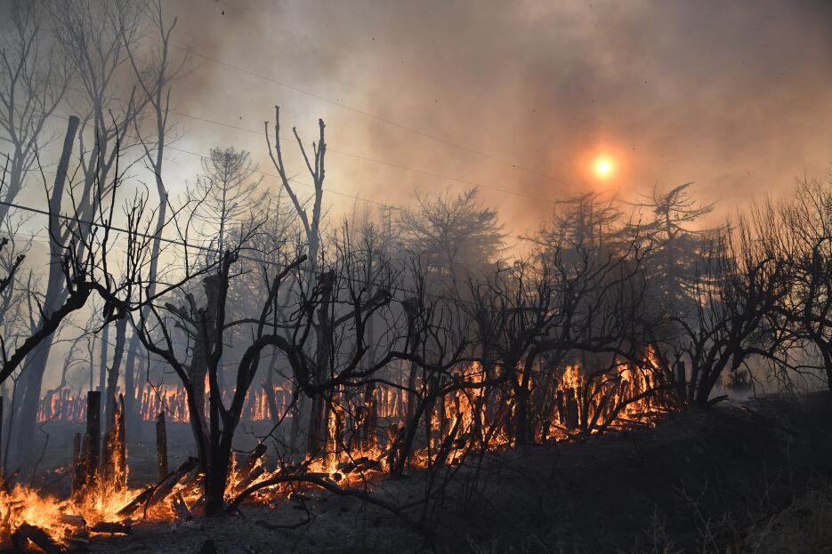 El estado emitió una declaratoria de emergencia por los daños.