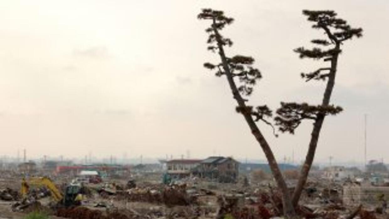 Un terremoto de magnitud 7.0 sacudió la costa este de Japón a las 09:57...