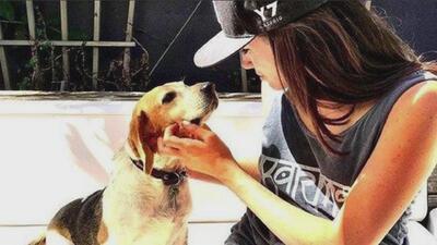 Guy, el perro que Meghan Markle rescató de un refugio y ahora vive como príncipe en Inglaterra