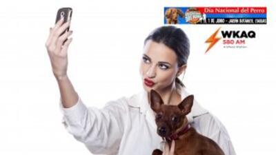 """Celebra el Día Nacional del Perro. Tómate un """"selfie"""" con tu perro, enví..."""