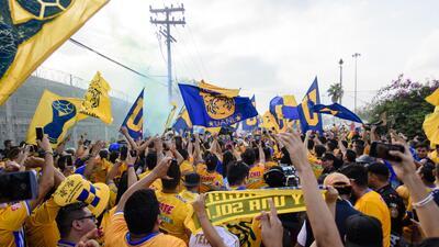 Liga MX, Tigres y Rayados toman medidas... ¡No más barras visitantes ni caravanas!