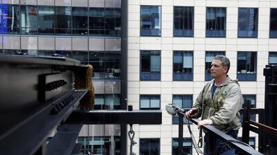 En fotos: Remueven con precisión milimétrica un gigantesco panal de abejas de lo alto de un rascacielos