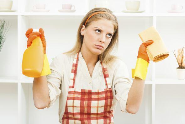 Los productos de limpieza del hogar y los desinfectantes son tóxicos par...