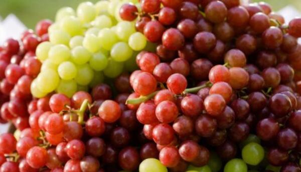 Igualmente la conocida tradición de comer las 12 uvas durante las última...