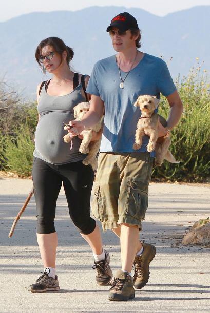 Salió con Paul y sus perritos a caminar hace tan sólo una...