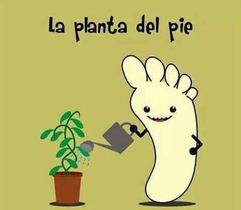 """""""La planta del pie""""."""