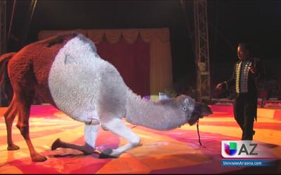 Cepillin el payaso más famoso de la televisión hispana está en Phoenix