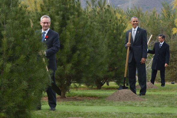 Jefes de Estado de países como China, Rusia, Japón, EEUU y otros, reunid...