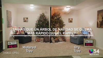 ¿Sabía que un árbol de Navidad se puede quemar más rápido que el papel?