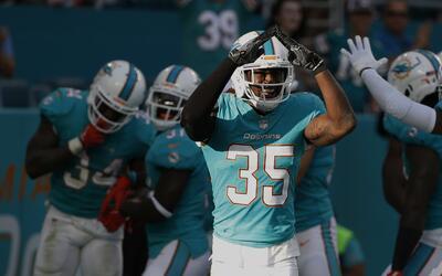 Walt Aikens, de los Dolphins de Miami, celebra luego de lograr un safety...