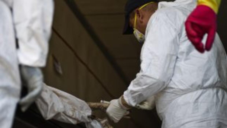 Aumentó el número de narcofosas halladas en el estado de Durango.