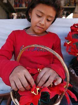 Gabriela Hernández de 8 años de edad trabaja en un arreglo floral navide...