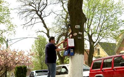 'Arbolibro', la iniciativa que promueve la lectura en Chicago