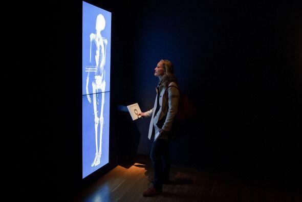 Ahora, gracias a las técnicas de visualización avanzadas, el museo nos m...