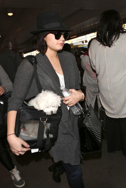 Algunas celebridades hasta apostaron por costoso maxi bolsos para llevar...