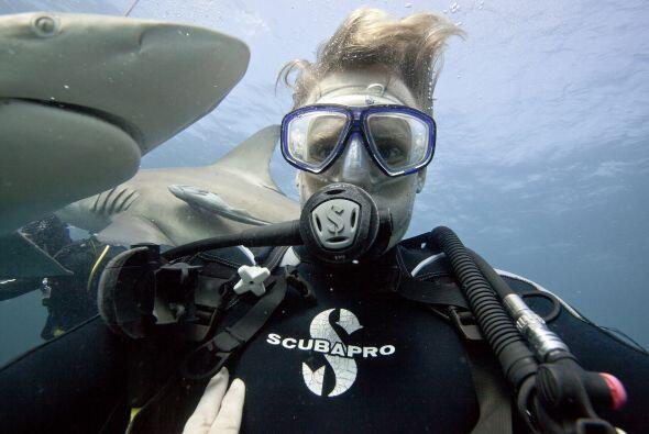 Por otro lado, los tiburones sólo matan alrededor de  5 personas por año.