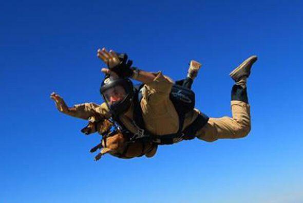 La caída fue por más de trece mil pies, ambos disfrutaron de esta experi...